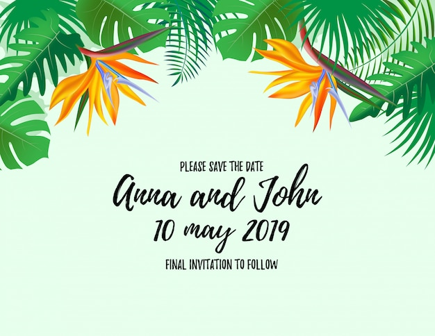 Save the date welcome card with palm plant