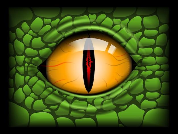 파충류의 무서운 눈.