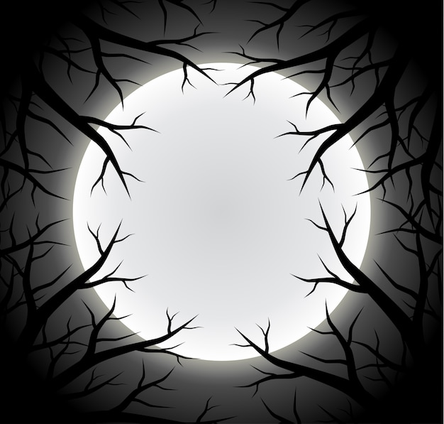 Scary full moon background with silhouette tree branch