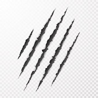 무서운 leceration 종이 표면. 야생 동물 발톱 스크래치 텍스처. 찢어진 종이 가장자리. 삽화