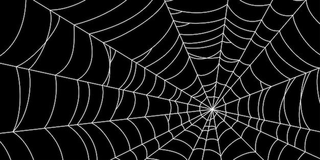 Scary spider web white cobweb silhouette isolated on black background