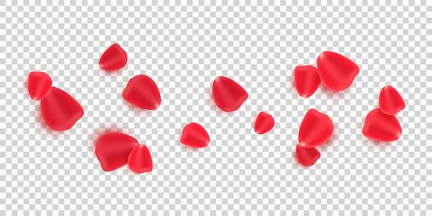 Разбросанные красные лепестки роз, изолированные на прозрачном фоне.