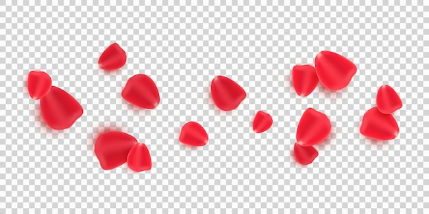 Scattered red rose petals isolated on transparent background.