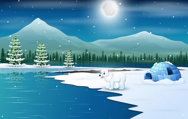 Scene a polar bear and igloo in a winter night