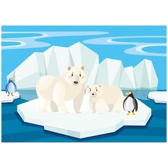 Scene of polar bears and penguins on an iceberg
