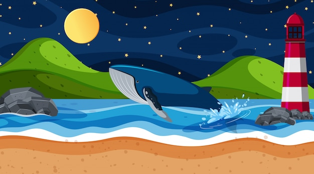 Scene  whale in the ocean