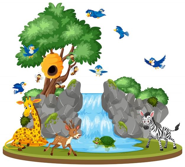 Scene of wild animals by waterfall