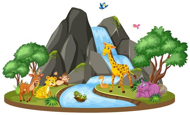 Scene of wild animals and waterfall