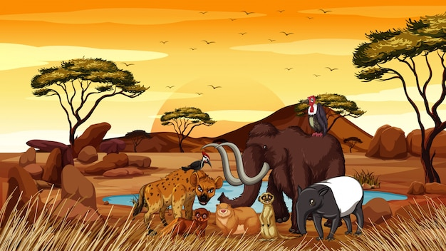 Scene with african animals in the field