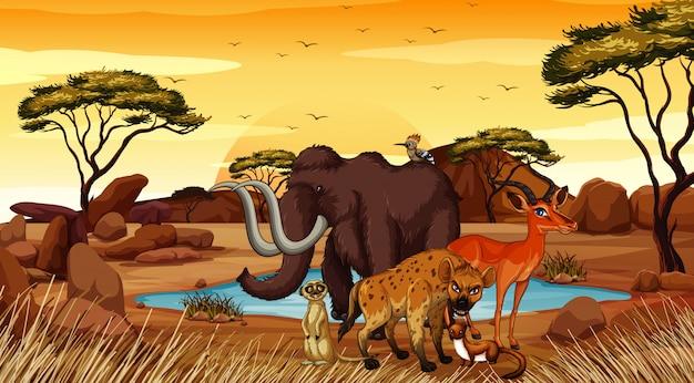 Scene with animals in desert field