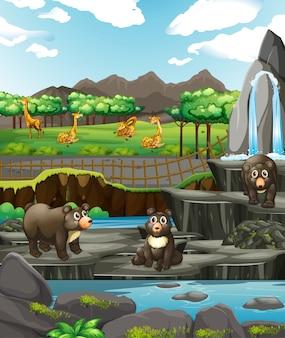 Scena con animali allo zoo