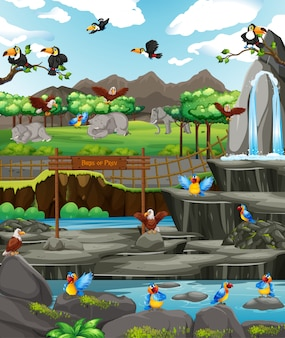 動物園で鳥とのシーン