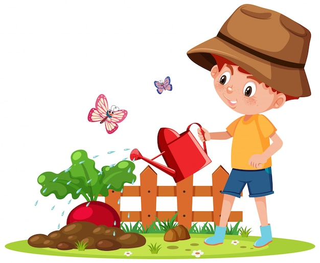 Scene with boy watering vegetable in the garden