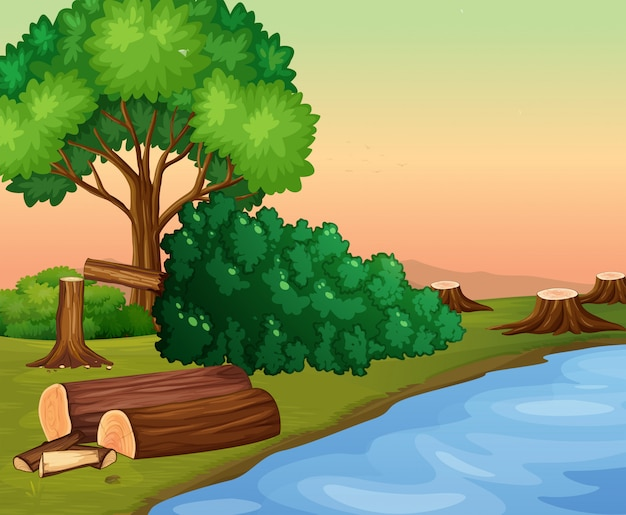 Scene with chopped woods by the river