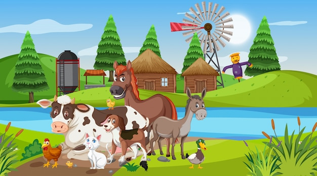 Scene with farm animals by the river at the farmyard