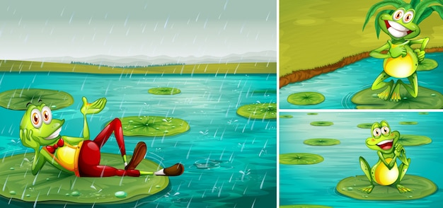 Сцена с лягушками в пруду