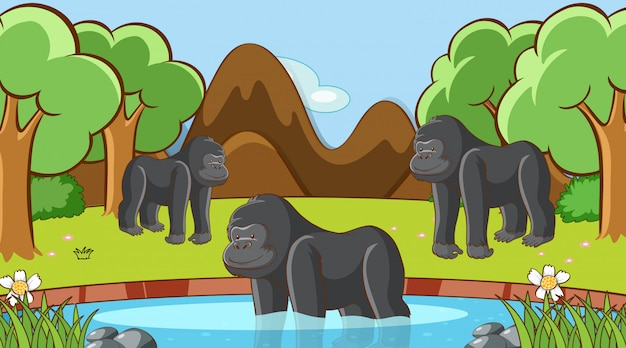 Scene with gorilla in the forest Free Vector