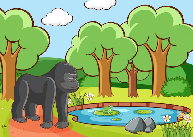 Scene with gorilla in forest