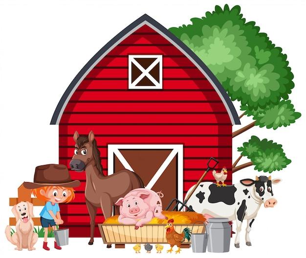 어린 소녀가 농장에서 동물 먹이와 현장