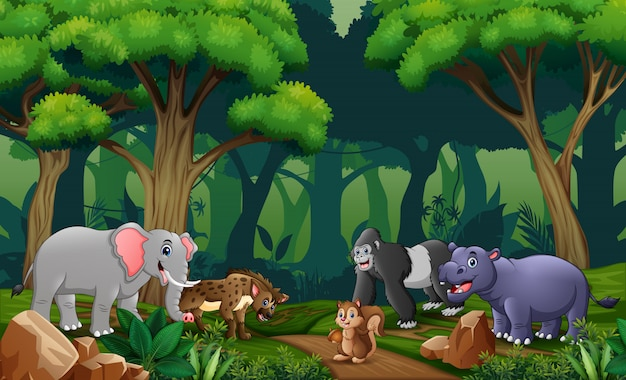 Scene with many animals in the forest