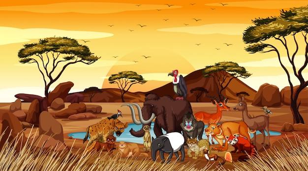 フィールドに多くの動物がいるシーン