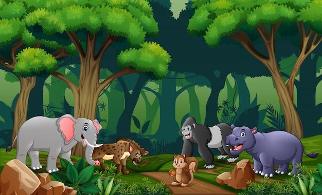 숲에 많은 동물이있는 장면