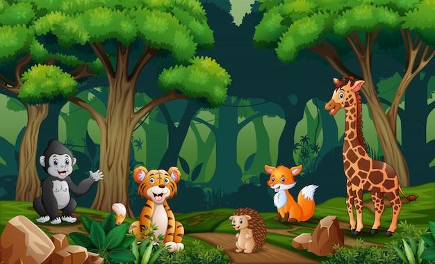 Сцена со многими животными в лесу