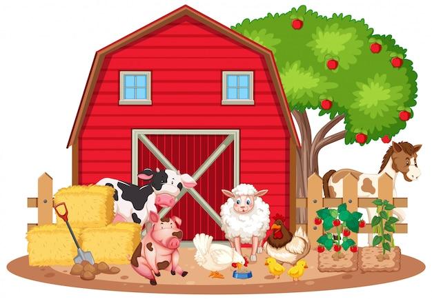 농장에 많은 농장 동물이있는 장면