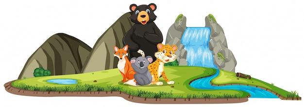 白の滝で多くの野生動物とのシーン