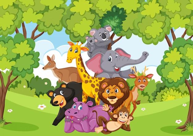 숲에 많은 야생 동물이있는 장면