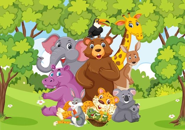 공원에서 많은 야생 동물이있는 장면