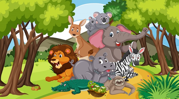 Scene with many wild animals in the park