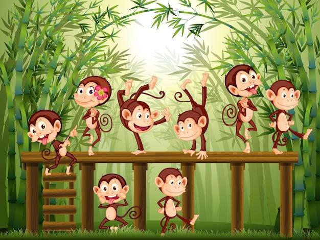 竹の森の中の猿との情景