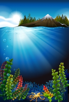 Scene with ocean and the underwater