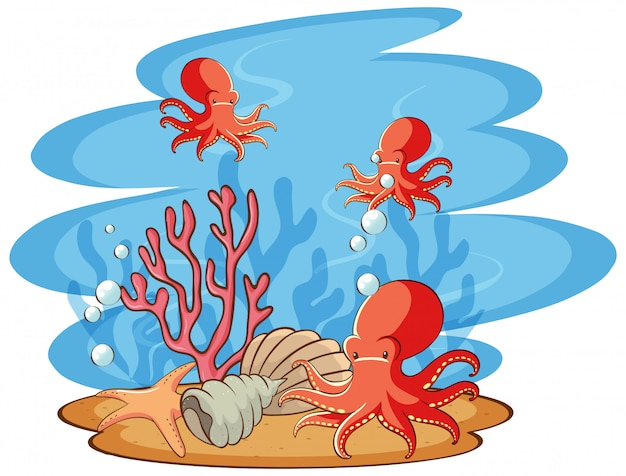Сцена с купанием осьминога в море
