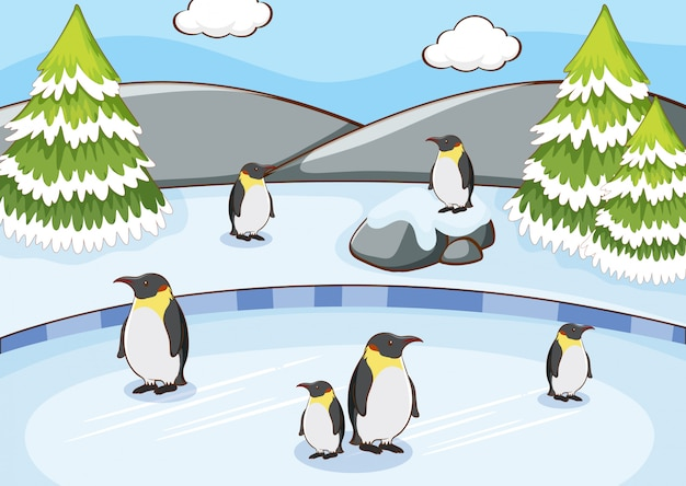 Scene with penguins in the snow