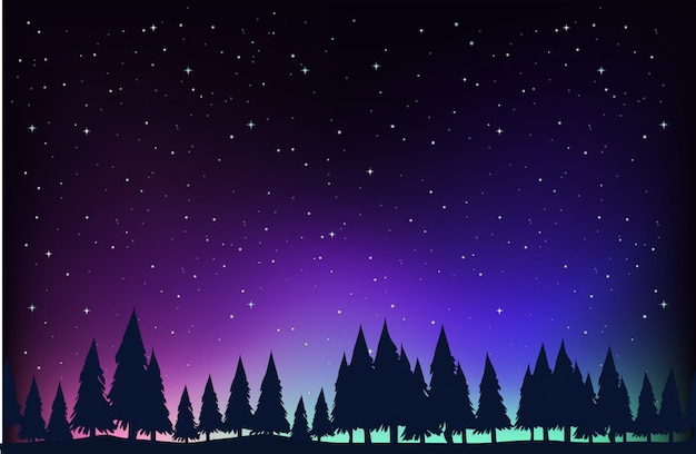 Scene with pine trees at night background