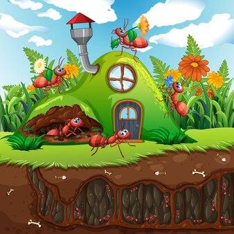 Сцена с растениями и насекомыми в саду