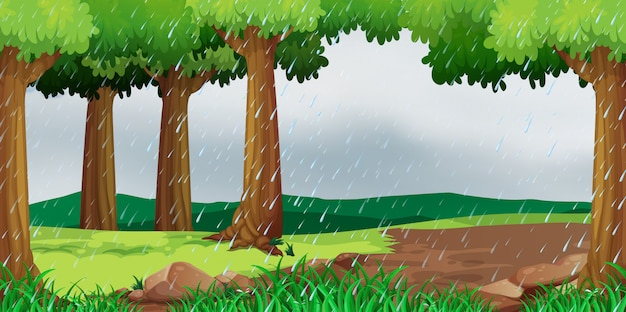 Сцена с дождем в парке