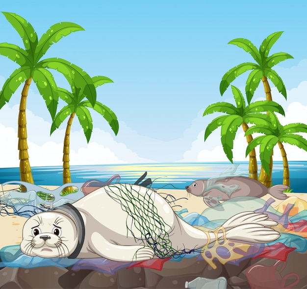 Сцена с тюленями и полиэтиленовыми пакетами на пляже