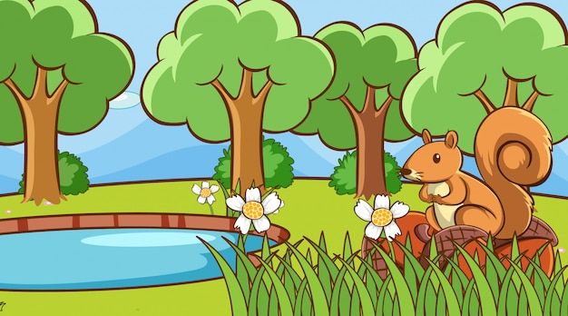 池のそばのリスのいる風景