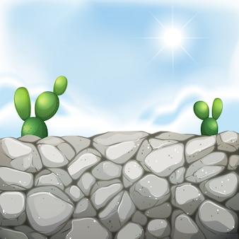 Scene with stone wall and cactus