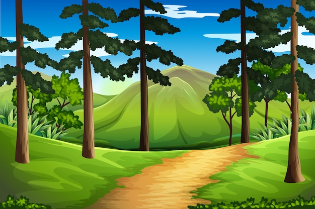 Scene with tall trees and mountain
