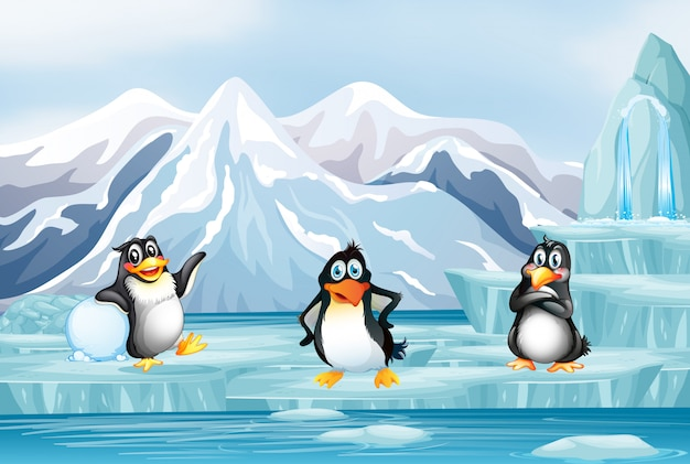 氷の上の3つのペンギンのシーン