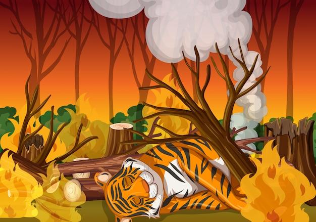 Scena con tigre e fuoco selvaggio