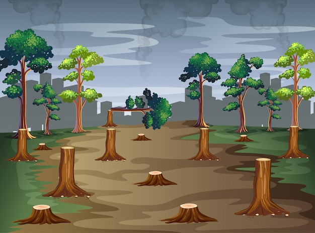 Scene with trees being chopped