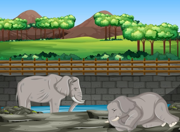 動物園で2頭の象がいるシーン