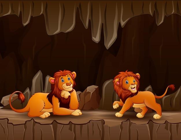 洞窟に2頭のライオンがいるシーン