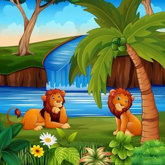 川のそばに2頭のライオンが座っているシーン