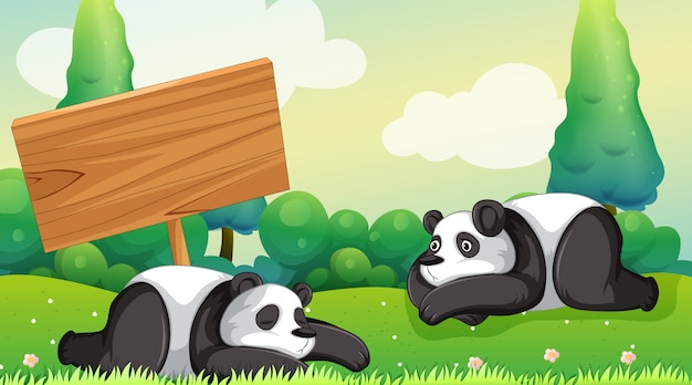 Scene with two pandas in the park